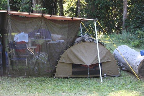 Eungella, Australia: Our Camp spot close to the river