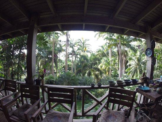 Hunte's Gardens: Hunte's Garden Balkon