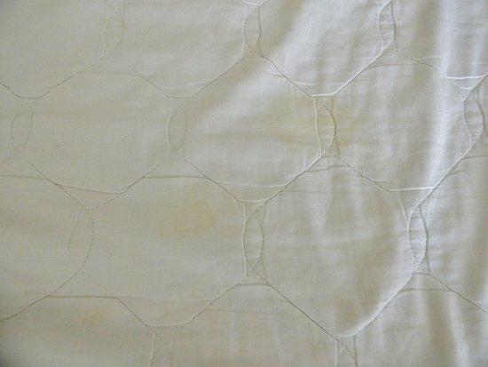 Apple Motor Inn: heavily stained mattress protector
