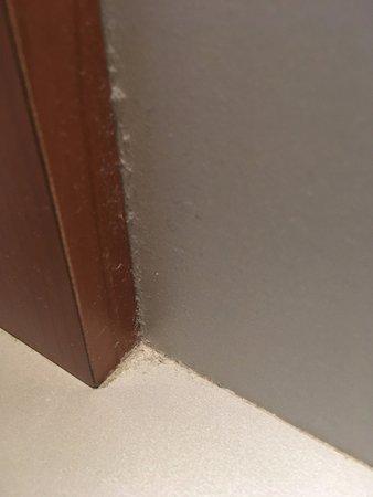 Schimmel op de badkamer voegen - Bild von Sauna & Wellness resort ...