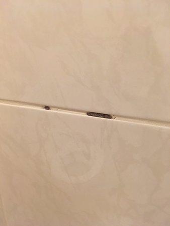 Schimmel op de badkamer voegen - Foto van Sauna & Wellness resort ...