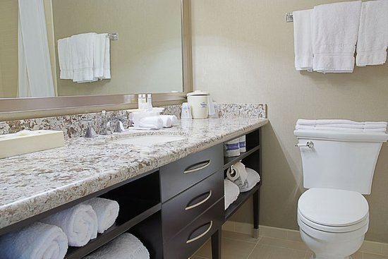 Holiday Inn Express Boca Raton-West : Guest Bathroom