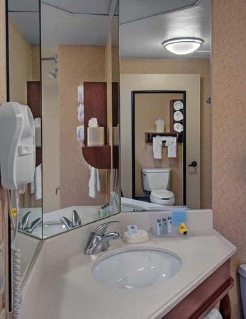 Hampton Inn Des Moines-West: Room Type Bathroom Vanity