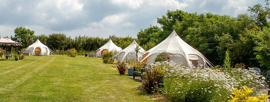 Lowarth Gl&ing All four tents in Summer & Poppy tent in garden - Picture of Lowarth Glamping Edmonton ...