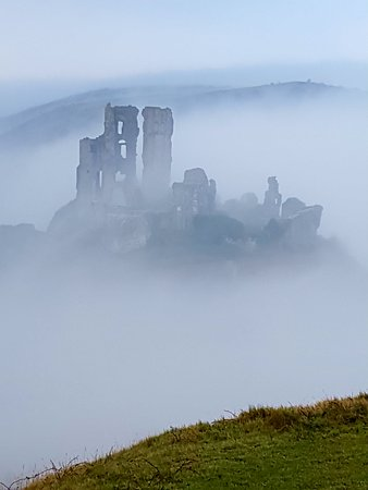 Corfe Castle, UK: We had just walked up this big hill in freezing fog to get this shot and were very hungry !!