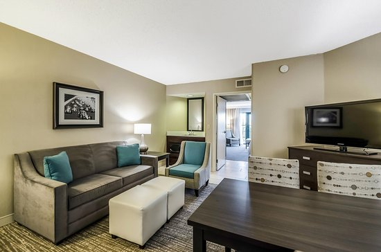 Embassy Suites by Hilton Indianapolis - North: Queen Suite Living Room