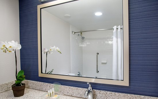 Nashville Airport Hotel: Bathroom Vanity