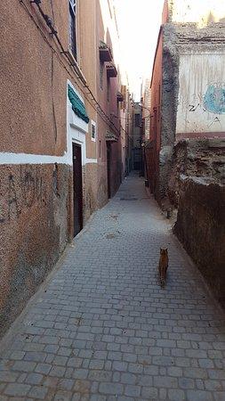 Riad Alegria: La calle donde se encuenta el riad. Hay dos o tres riads mas