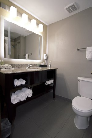 Adrian, MI: Simply Smart Bathroom