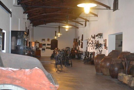 Museo del vino: História