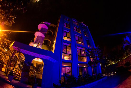 Dharma Beach: FRONT VIEW NOCTURNO