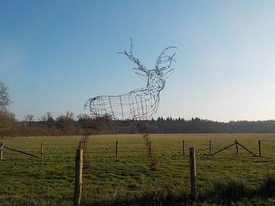 Arche de la Nature: Cerf en fil de fer
