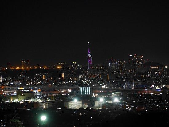 Ikimatsudai Chuo Park