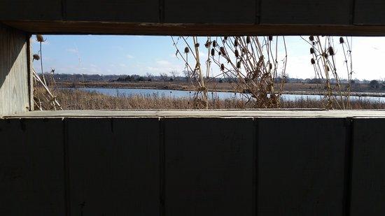 Gardner, KS: KCPL Prairie Wetlands