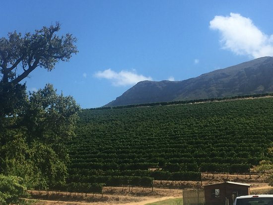 Constantia, Zuid-Afrika: photo0.jpg