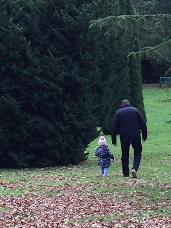 Pinetum Park and Pine Lodge Gardens: My husband and granddaughter enjoying the crunchy leaves