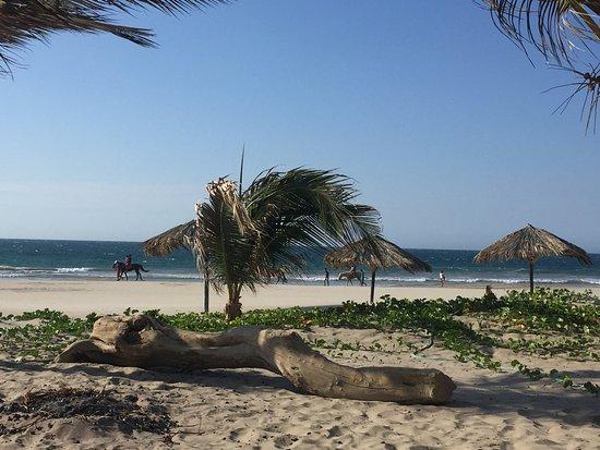 Bora Bora Bungalows: photo4.jpg