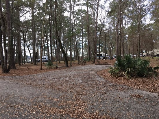 Sam Houston National Forest: spacious