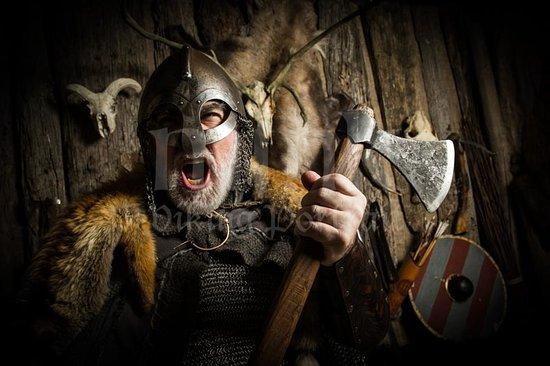 swiss viking picture of mink viking portrait studio reykjavik