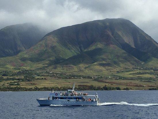 Maalaea, Hawaje: photo3.jpg