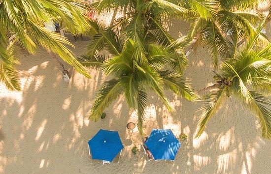 Pancho Playa