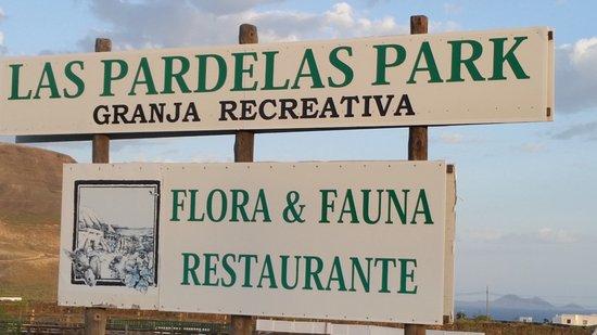 Orzola, Spanyol: Pardelas Park