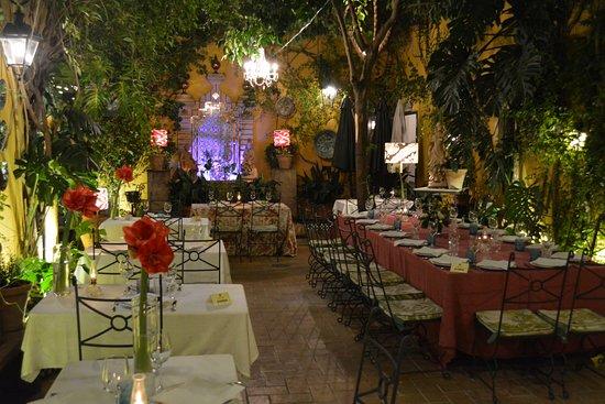 Amarilis en el patio de guadalquivir fotograf a de casa manolo le n sevilla tripadvisor - Casa manolo leon sevilla ...