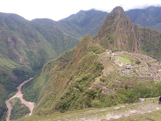 Llama Path: Machu Pichu