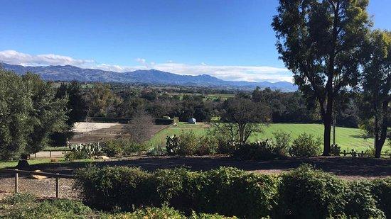 Solvang, CA: Wonderful Los Olivos CA!