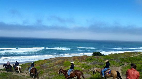 Mar Vista Stables: Cliffs