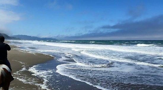 Mar Vista Stables: So windy