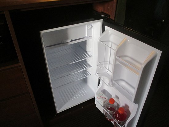 AmericInn Lodge & Suites Tofte - Lake Superior: fridge included