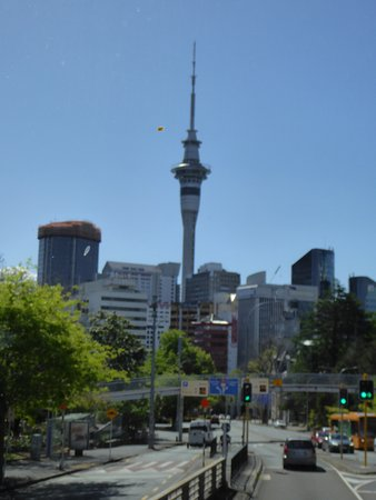 Auckland Hop On Hop Off Explorer: Passing View of the Sky Tower