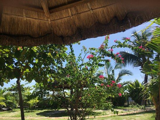 Cocobana Beach Resort: Вид из номера и у бассейна. Уютный и относительно недорогой отель по сравнению с другими. Хозяев