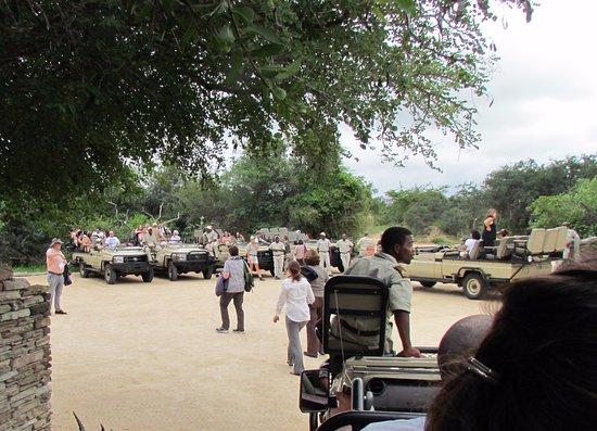 Kapama River Lodge: saída para os safaris