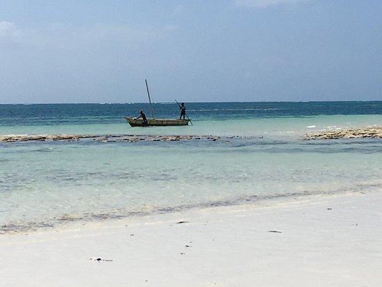 Ocean Sports Resort: Turtle Bay