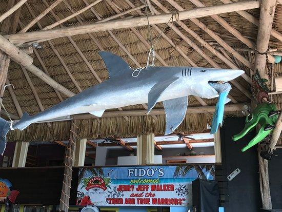 Decor at Fido's (pronounced Feedo's) - Picture of Fido's ...  |Fidos San Pedro Belize
