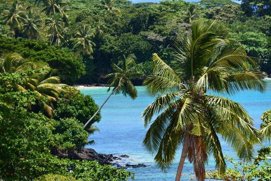 Taveuni Island Resort & Spa Resmi