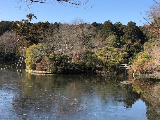 Shirakawa-cho, Japon : photo5.jpg