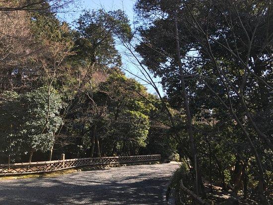 Shirakawa-cho, Japon : photo7.jpg