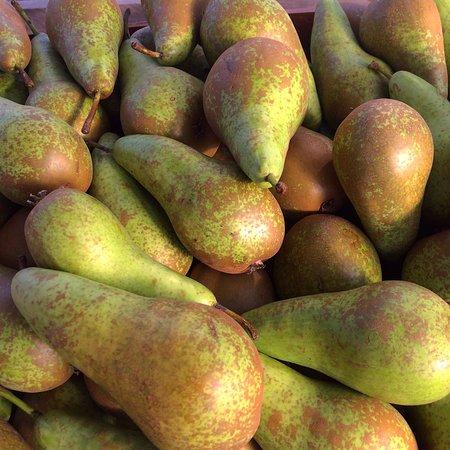 Chimacum, WA: special varieties
