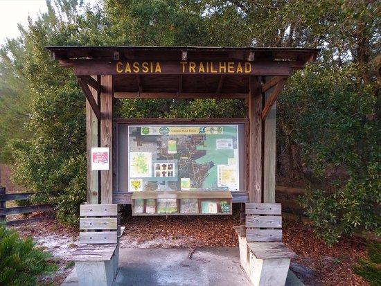 Eustis, FL: Seminole State Forest