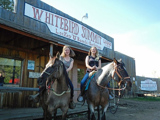 Whitebird Summit Ranch : Horse trail ride