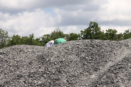 Blasdell, Estado de Nueva York: Digging