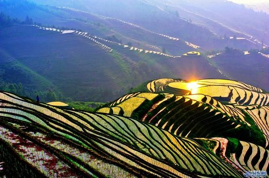 Full-Day Bus Tour: Longji Rice ...