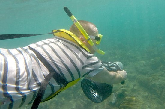 Underwater Power Snorkel Safari i...