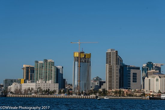 Downtown San Diego Skyline Picture Of Randy Phillips Tours San Diego Tripadvisor