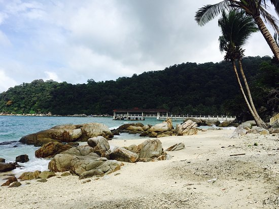 Coral View Island Resort: Beaches