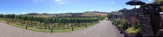 Waiheke-øya, New Zealand: photo5.jpg