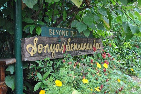 Sonya's Secret Garden: Spa